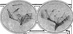 Il New York Times del 27 agosto 1911 annuncia la scoperta, da parte dell'astronomo Lowell, di due nuovi canali su Marte, costruiti con strabiliante rapidità dai nostri vicini marziani.